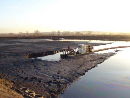 Seekor Kucing Lumpur membersihkan kolam fly ash di pembangkit listrik.
